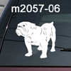 Bull Dog, Bulldog, American, English, British, Dorset decal